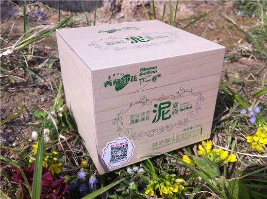 绿豆杉树原木图片